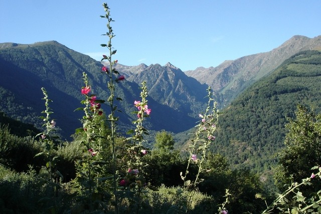 Vallée du Bouychet depuis Gestiès